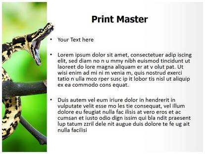 carpet python snake powerpoint template background. Black Bedroom Furniture Sets. Home Design Ideas
