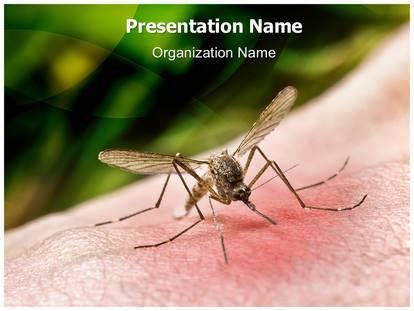 Dengue fever powerpoint template background 1g toneelgroepblik Choice Image