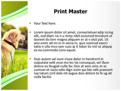 dog powerpoint template background | subscriptiontemplates, Modern powerpoint