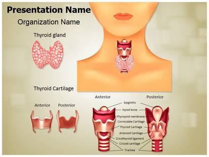 Endocrine gland thyroid powerpoint template background endocrine gland thyroid powerpoint template 01614 standard 43 1g toneelgroepblik Gallery
