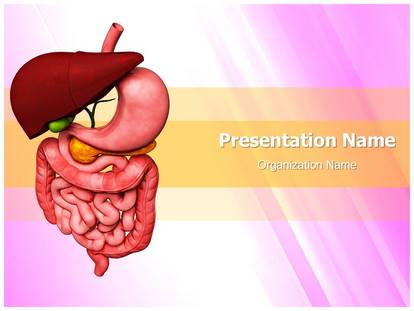 Human digestive system powerpoint template background human digestive system powerpoint template 02211 standard 43 1g toneelgroepblik Images