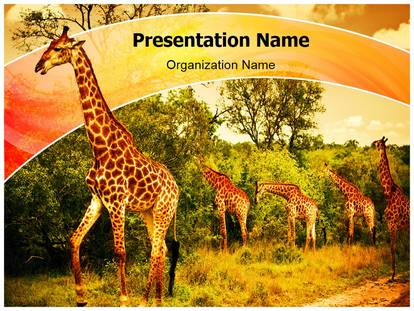 south african giraffes powerpoint template background, Modern powerpoint